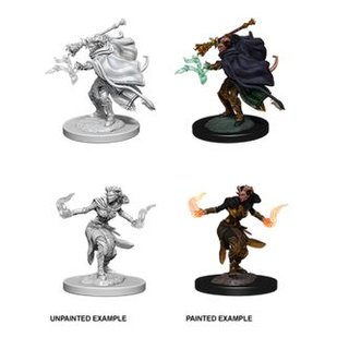 D&D Nolzurs Marvelous Miniatures: Tiefling Female Warlock