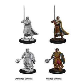 D&D Nolzurs Marvelous Miniatures - Male Human Cleric