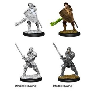 D&D Nolzurs Marvelous Miniatures - Male Human Fighter