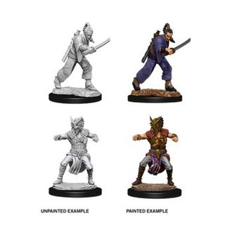 D&D Nolzurs Marvelous Miniatures - Male Human Monk